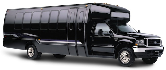 20 passenger party limo bus